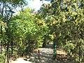 2012 - panoramio (339).jpg