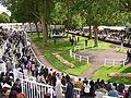 2012 Hippodrome de Longchamp Rond de presentation3.JPG