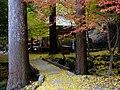 2014-11-24 Sekiganji 石龕寺 DSCF4759.jpg