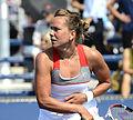 2014 US Open (Tennis) - Tournament - Barbora Zahlavova Strycova (15096144135).jpg