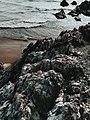 2017-05-20 11.32.56 1 Goa Diaries.jpg