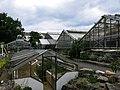 2018-06-18-bonn-meckenheimer-allee-169-botanischer-garten-07.jpg