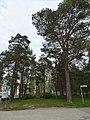 2019-05-22 Kasarmi, Oulu 08.jpg