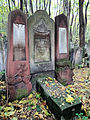 251012 Detail of tombstones at Jewish Cemetery in Warsaw - 62.jpg