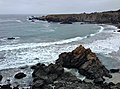 2 Coast from Jug Handle State Natural Reserve.jpg