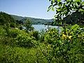 36 Turismo Emilia Romagna 8 giugno 2019 Parco dei laghi di Suviana e Brasimone, un ringraziamento speciale alle guide Eugenia e Walter.jpg