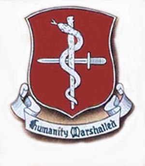 48th Armored Medical Battalion - Distinctive Unit Insignia