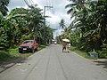 9759Poblacion III Del Carmen, Alaminos, Road 29.jpg