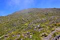 Açores 2010-07-22 (5149292970).jpg
