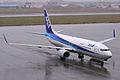 ANA B737-800(JA52AN) (4102441733).jpg