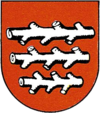 Coat of arms of Knittelfeld