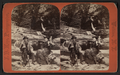 A couple relaxing on logs in Watkins Glen, by Hope, J. D., 1846-1929.png