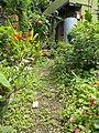 A small Garden 102535.jpg