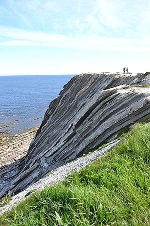 Abbadia - Corniche basque Strates géologiques formant de hautes falaises de flysch.jpg