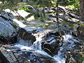 Above the Falls, N. Fork of the N. Fork American River - panoramio.jpg