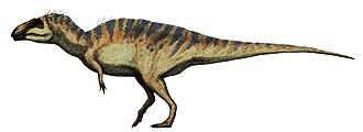 Acrocanthosaurus - Image: Acrocanthosaurus restoration