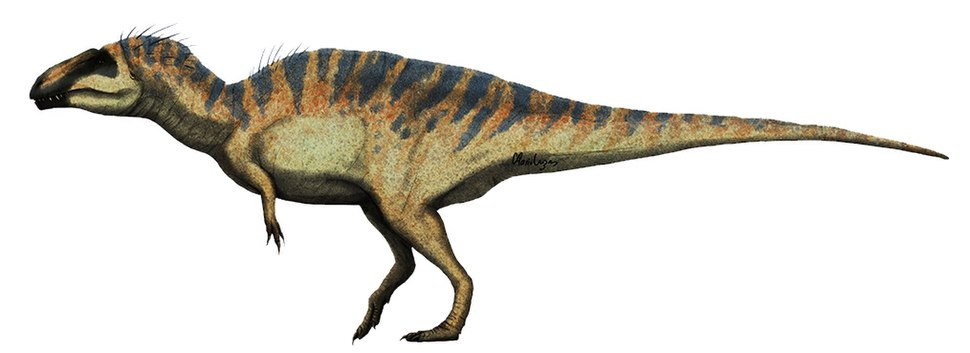 Acrocanthosaurus restoration