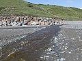 Afon Daron running across Aberdaron beach at low tide - geograph.org.uk - 533110.jpg