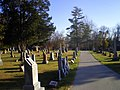 Albright Cemetery - panoramio.jpg