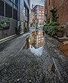 Alley, Pioneer Square.jpg
