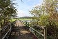 Alligator Lake 03.jpg