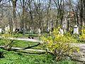 Alter Nördlicher Friedhof GO37.jpg