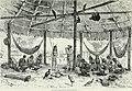 América pintoresca; descripcion de viajes al nuevo continente por los mas modernos exploradores (1884) (14779239454).jpg