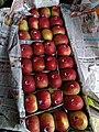 American apple.jpg
