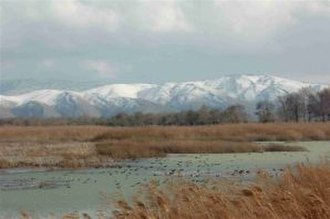 Aammiq Wetland - The wetlands in winter