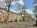Amsterdam-Noord - Den Burgstraat.JPG