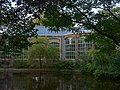 Amsterdam - Hortus Botanicus.JPG