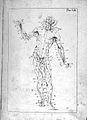 Anatomia esterna del corpo umano, title page. Wellcome L0023846.jpg
