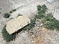 Ancient Tombstone in Jewish Cemetery - Old City - Bukhara - Uzbekistan (7515777688) (2).jpg