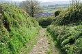 Ancient Trackway - geograph.org.uk - 1291731.jpg