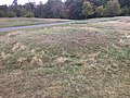 Anglo-Saxon barrow, Greenwich Park.jpg