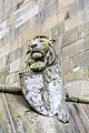 Animal Wall Lion.jpg