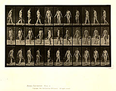 Animal locomotion. Plate 51 (Boston Public Library).jpg