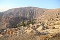 At-Tafilah, Jordan - panoramio (6).jpg