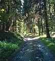 Attendorn, Germany (7300502244).jpg
