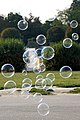 Austria-02977 - Bubbles (32809579401).jpg