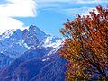 Autumn almanac (5157791946).jpg