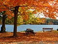 Autumn at Roseland Park, Woodstock Connecticut.jpg
