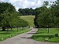 Avenue of trees at Edensor, Derbyshire - geograph.org.uk - 1413802.jpg