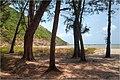Bãi biển Lò Vôi Côn Đảo - panoramio (1).jpg