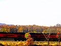BNSF Train - panoramio.jpg
