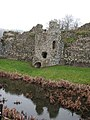 Baconsthorpe Castle - reflection - geograph.org.uk - 1121159.jpg
