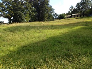 National Register of Historic Places listings in Hinds County, Mississippi - Image: Bailey Hill Civil War Earthworks (1)