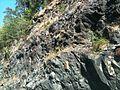 Bamble Aaby-Vinjekilen E18 IMG 5235 geology.JPG