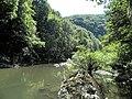 Banat,Nera Canyon - panoramio (62).jpg