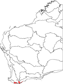 A map of western Australia with two small red patches on the southern coastline.
